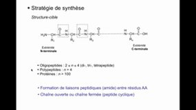 PACES_UEsp PHARMACIE-B12 Synthèse peptidique
