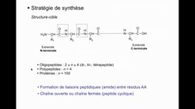 UE11.S2-A12 Synthèse peptidique